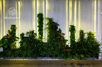 muong-thanh-office-greenwall-04.jpg