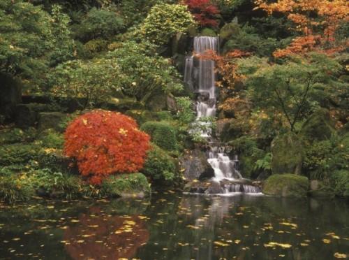 waterfall-koi-pond-10-600x447