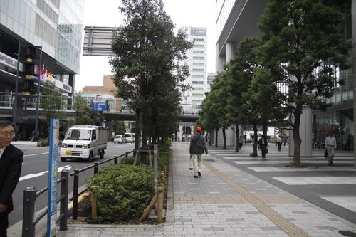 Trên mặt đất, khu trung tâm văn phòng, vỉa hè đi bộ rộng rãi với hai hàng cây xanh