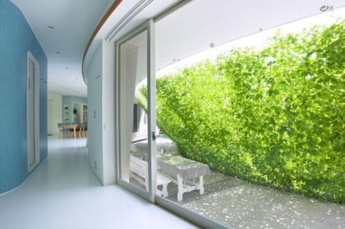 Màu xanh mát trước hiên nhà bởi dàn cây leo, một cảm giác muốn khám phá, che giấu thú vị. Green Screen House (Nhật bản) thiết kế của Hideo Kumaki Architect Office
