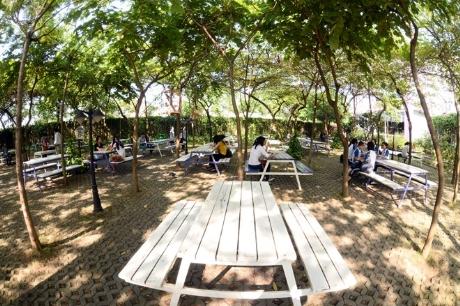 Ngồi thư giãn tại vườn sinh viên có tiếng nhạc du dương và vô vàn loài chim khác nhau cùng đua tiếng hót .