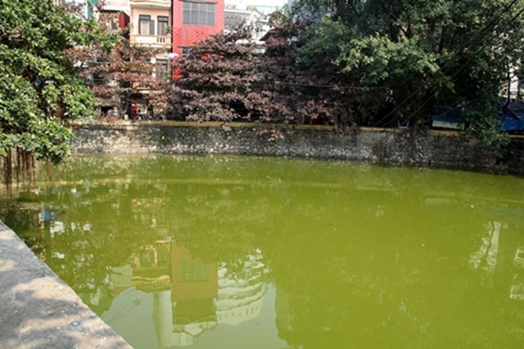 Hồ nước trong và sâu với cái tên mỹ miều Tẩm Nguyệt (nay người dân quen gọi là hồ Bán Nguyệt) giờ trở thành hồ chứa nước thải và thả cá.