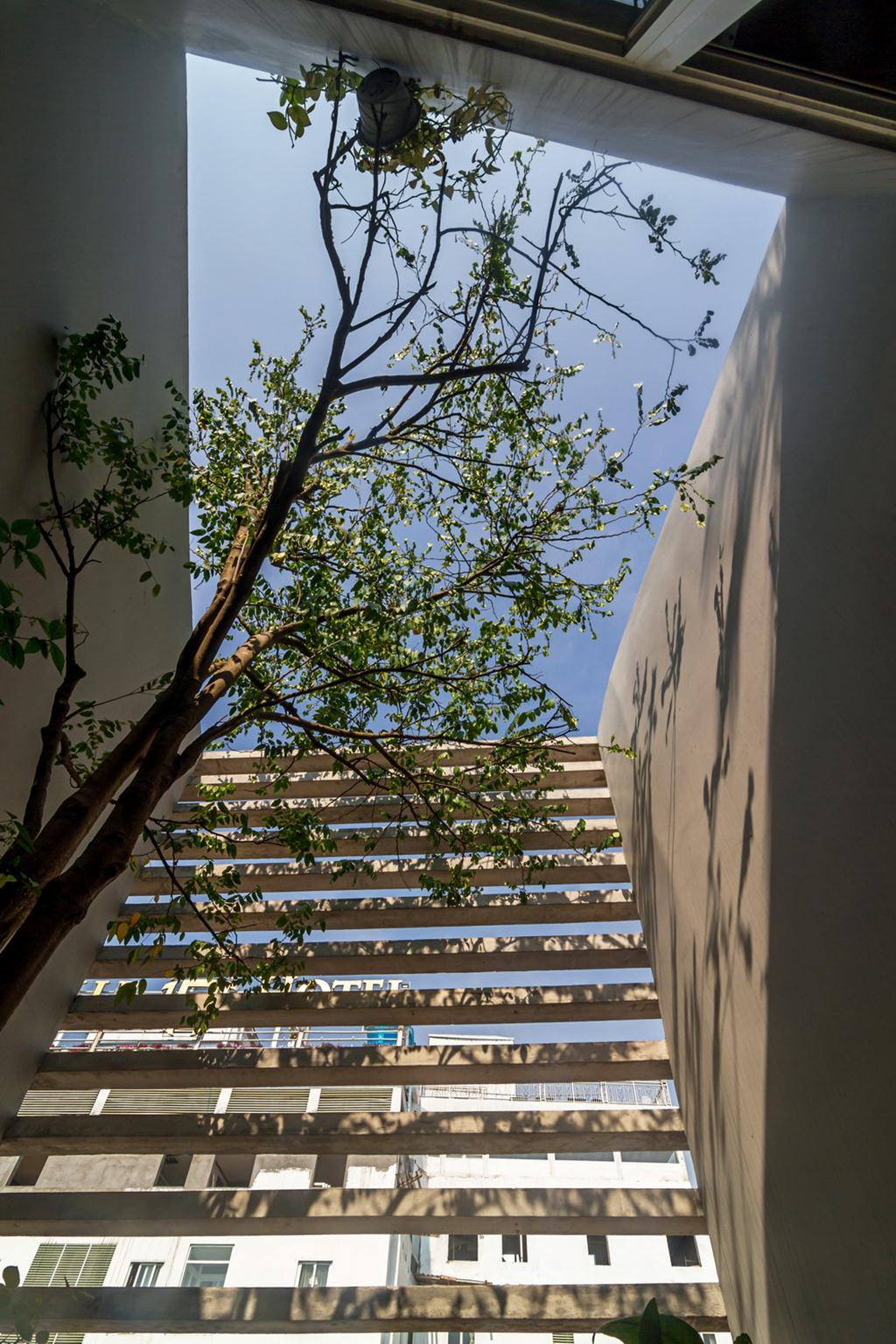 16_Garden1_Hoang Le (Copy)