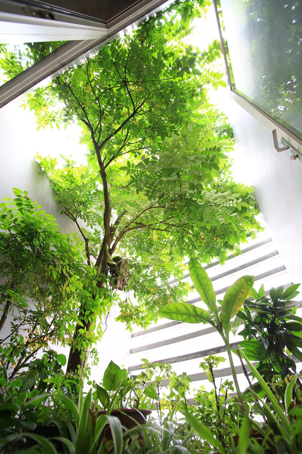 17_Garden2_BENGBENG (Copy)