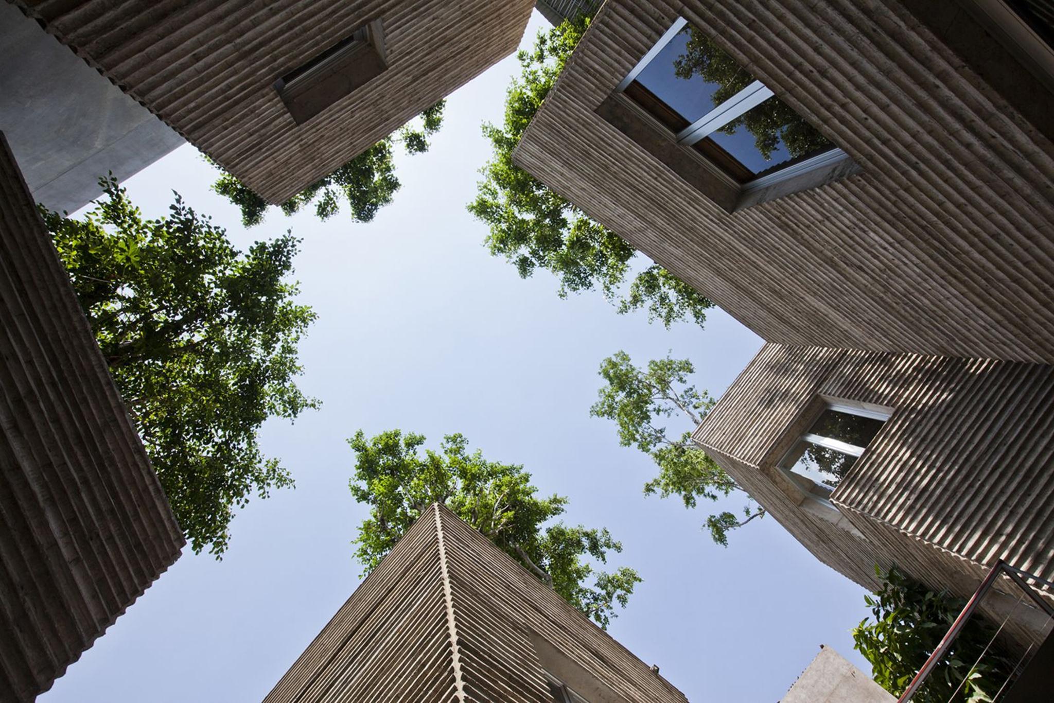 Công trình Nhà House for Trees (Hồ Chí Minh)
