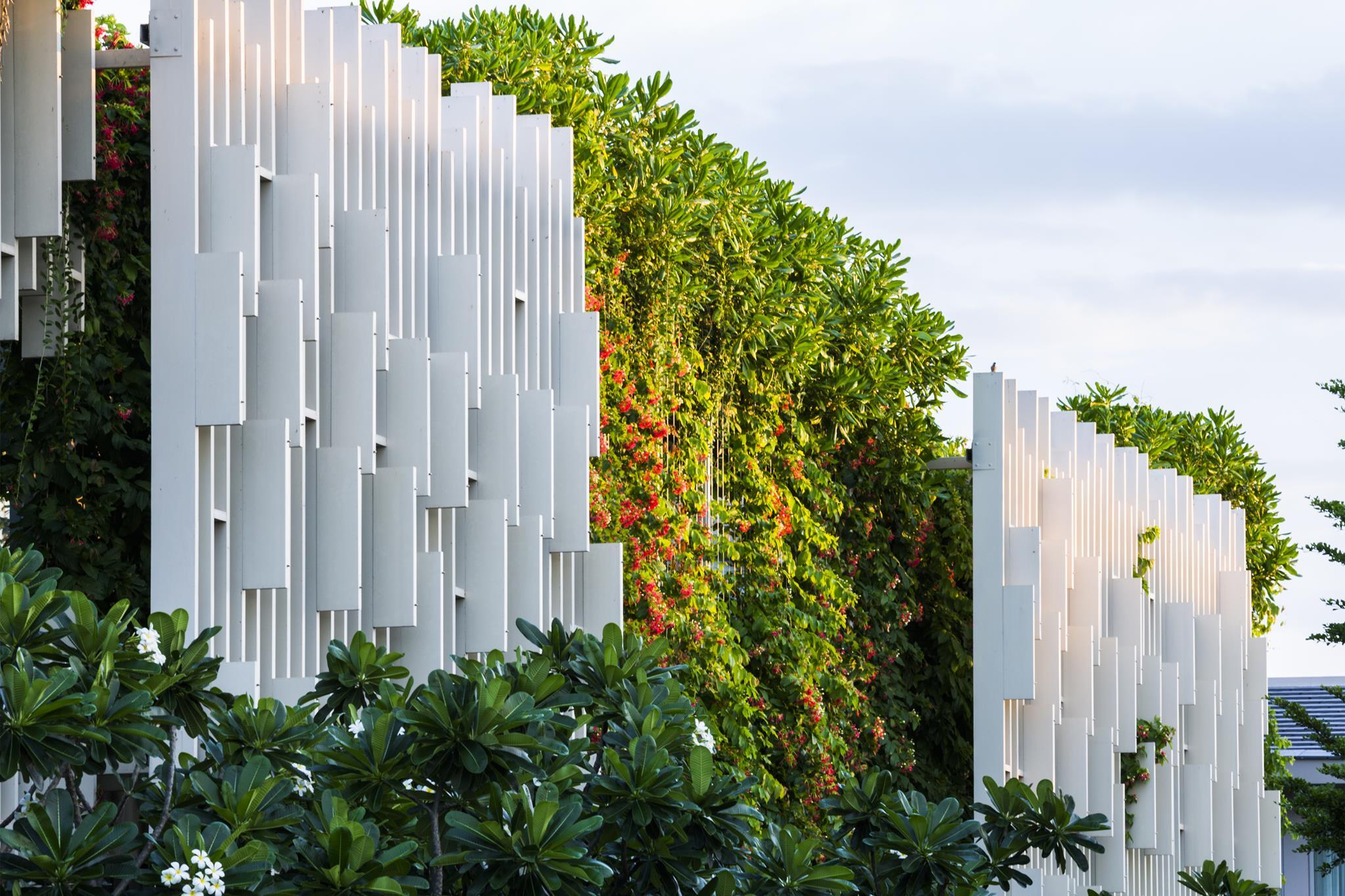 Mảng tường xanh của công trình - Ảnh(c)Hirouyki Oki