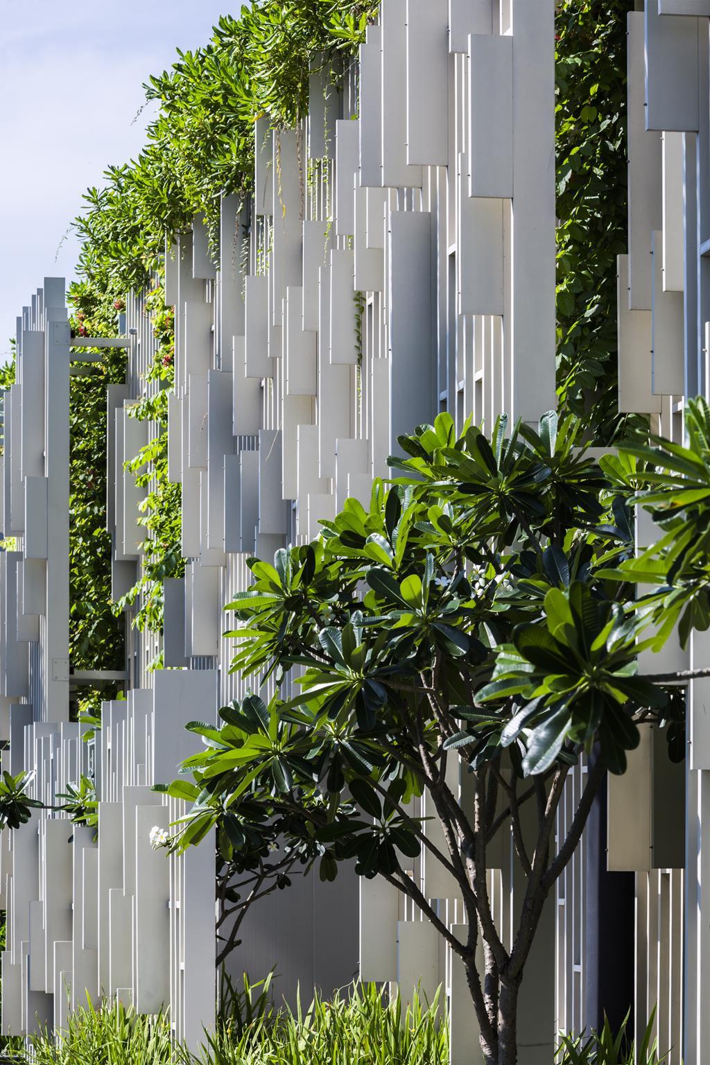 Mảng tường xanh - Ảnh(c)Hirouyki Oki