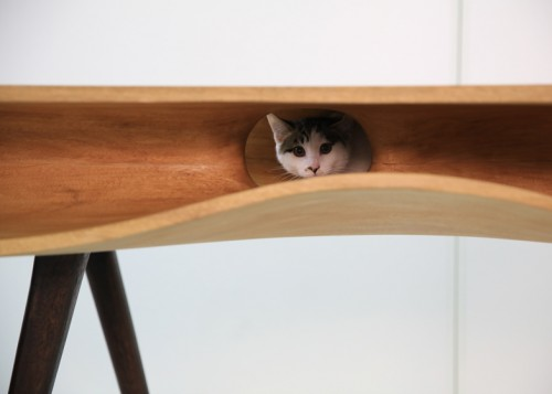 CATable-by-Hao-Ruan_dezeen_ss4-500x357.j
