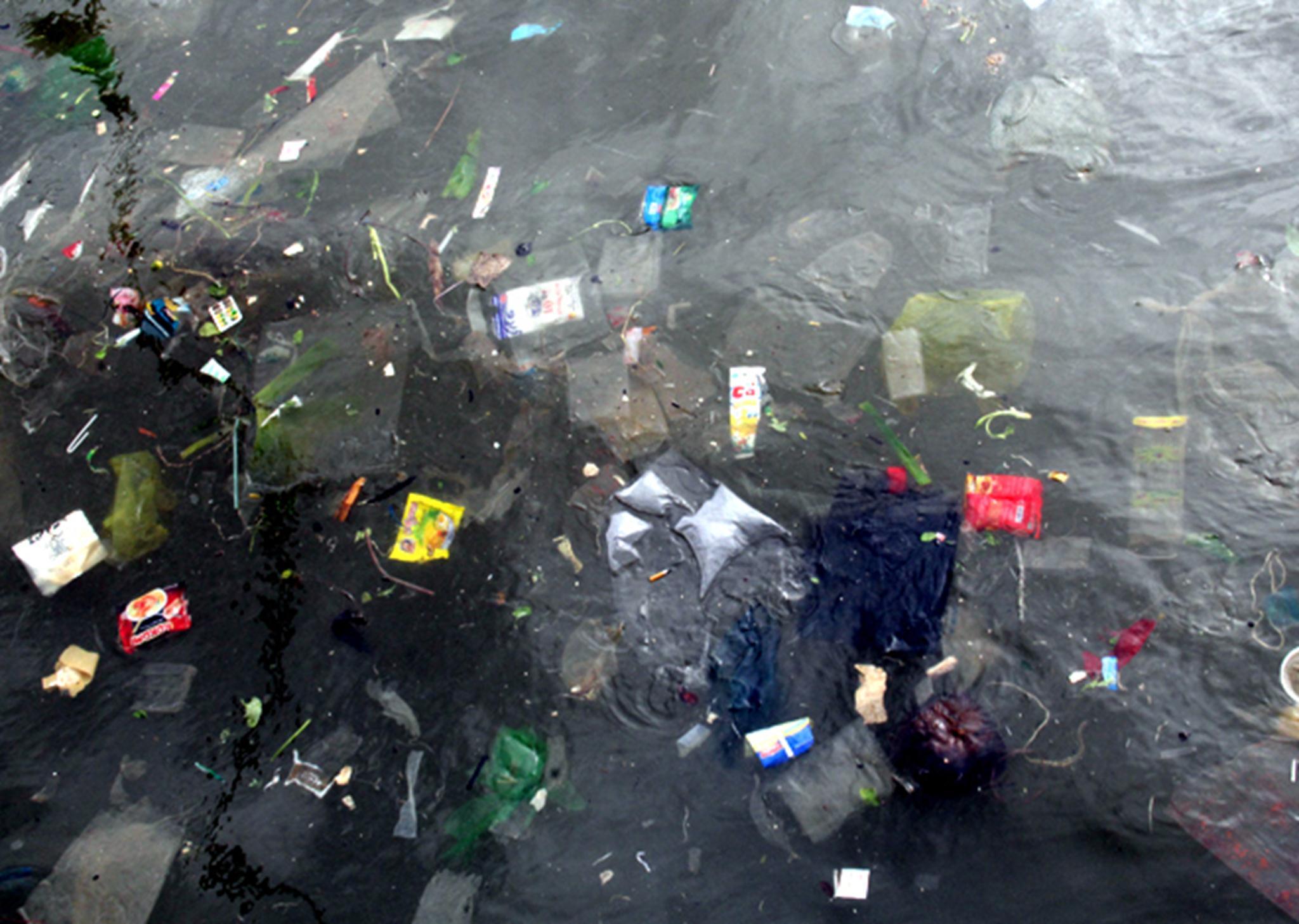 Theo người dân địa phương, những loại rác này chủ yếu do du khách mua đồ ăn bỏ bọc, hộp đem đến khu vực bãi biển ăn rồi vứt lại.