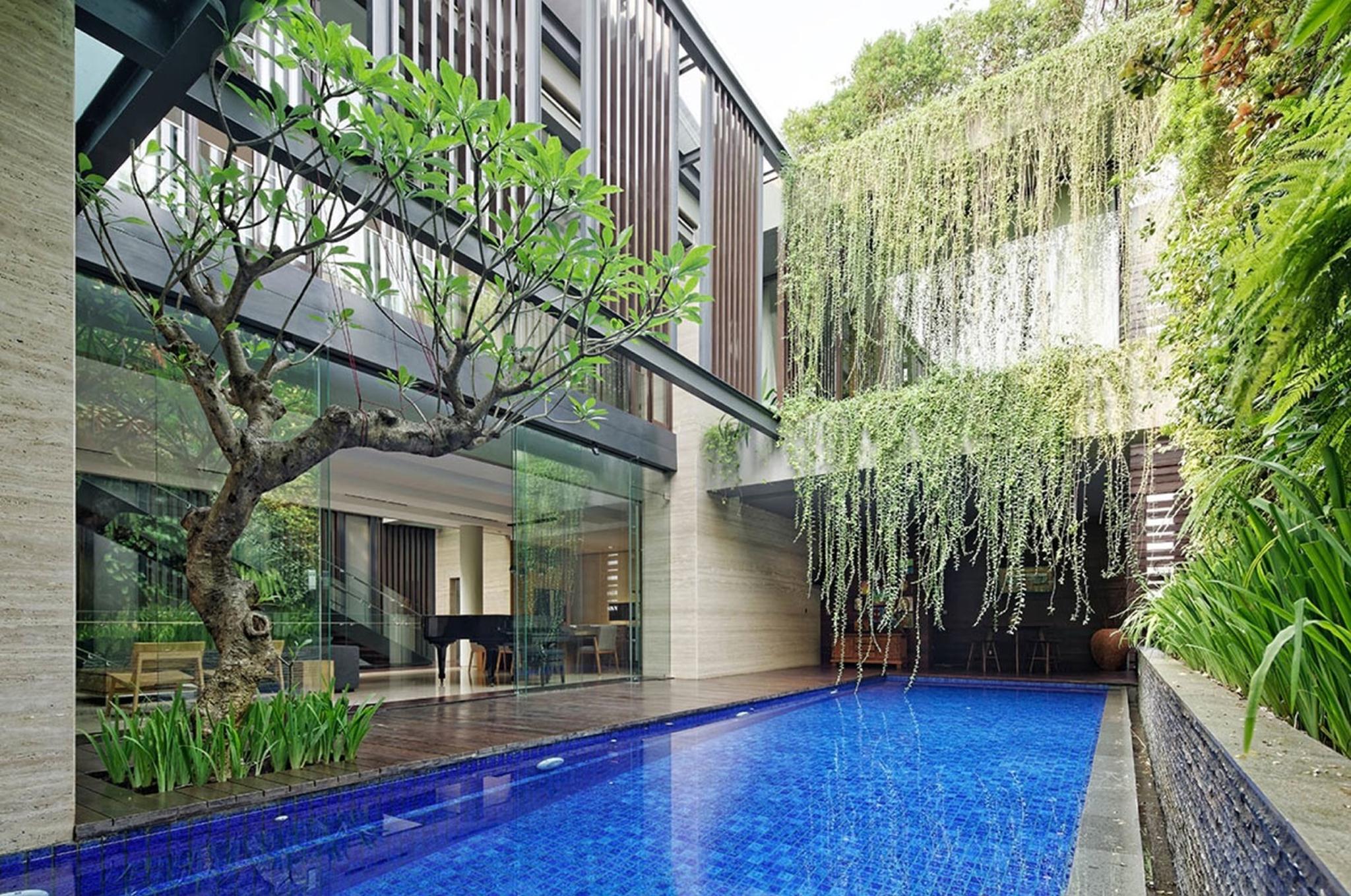 Cây xanh được trồng thẳng đứng như 1 đường viền tô điểm thêm vẻ đẹp cho ngôi nhà.