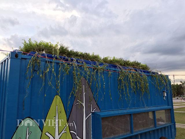 Phần trên nóc có thể dùng lá, cây xanh phủ lên để giảm nóng