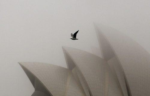 sydneys-opera-house-is-the-rightful-ambassador-of-australian-architecture