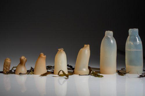 algae-water-bottle-ari-jonsson-889x592