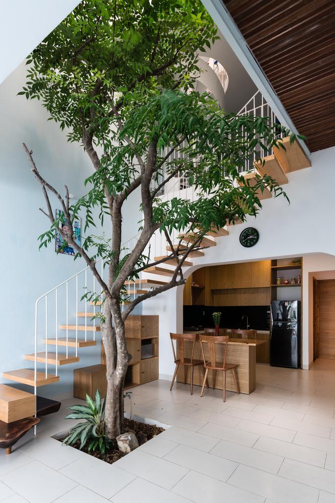 H2 | HH House - Cải tạo nhà ở để xanh hơn