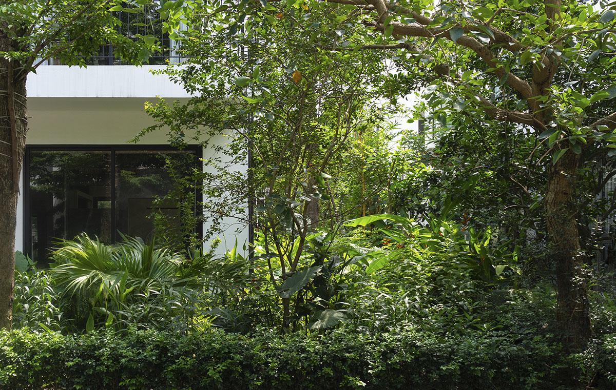 AHL Architects | ECV - Cải tạo biệt thự song lập Mimosa - Ecopark