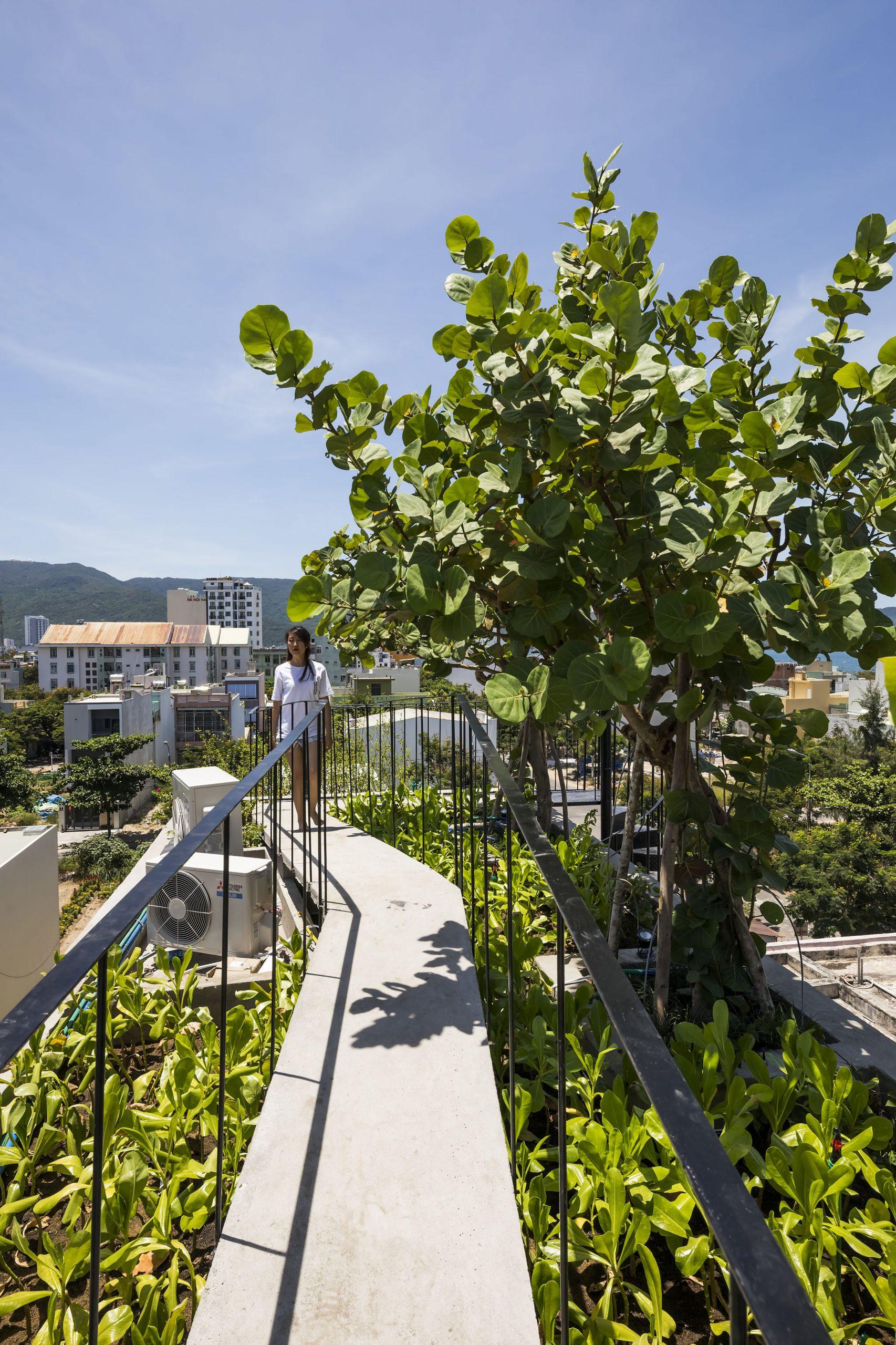 0666 scaled - The Concrete House 01 / Ho Khue Architects: Ngôi nhà 4 tầng với diện tích lô 5m x 16m