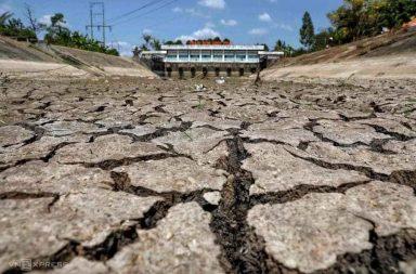 Lời kêu gọi chung tay hỗ trợ vùng xâm nhập mặn ở đồng bằng sông Cửu Long