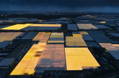 Kiến Việt - Cách Hà Lan dùng kiến trúc cung cấp lương thực cho thế giới
