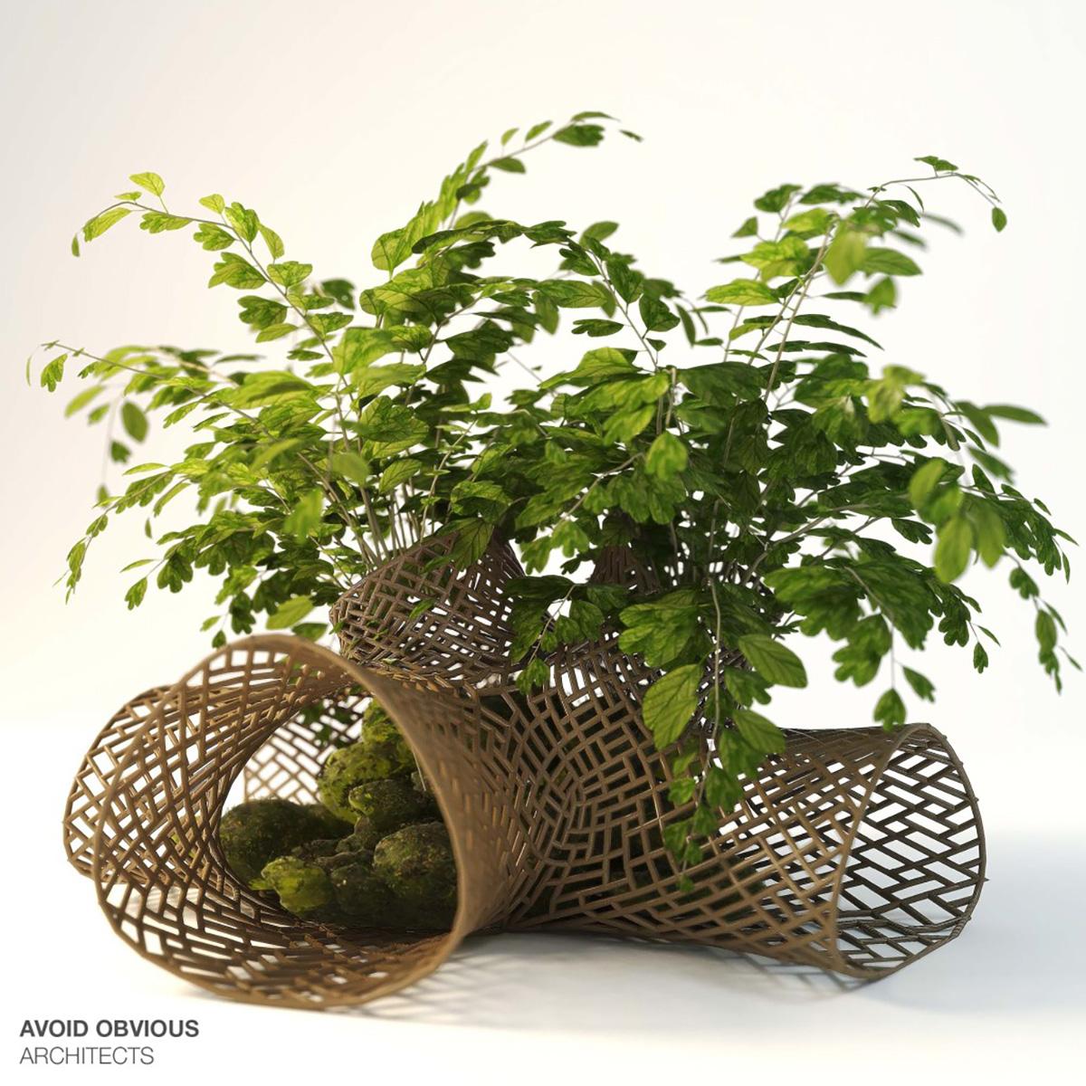 Kiến Việt - Circle of Life - Khoa học kết hợp nghệ thuật Avoid Obvious Architects