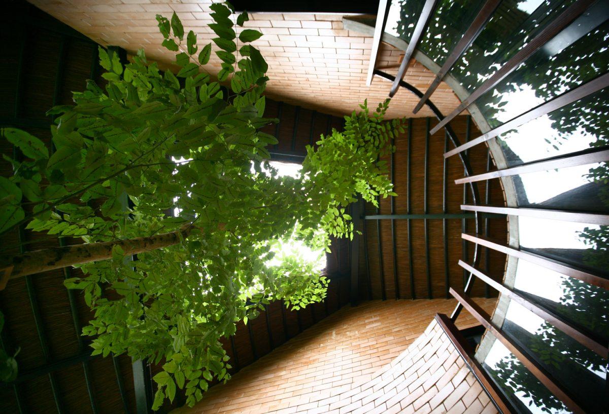 Nhà anh Hùng - Nhà ở nông thôn đương đại | 1+1>2 Architects