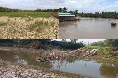 Hạn - Mặn gay gắt tại ĐBSCL: Né thời vụ để giảm thiệt hại