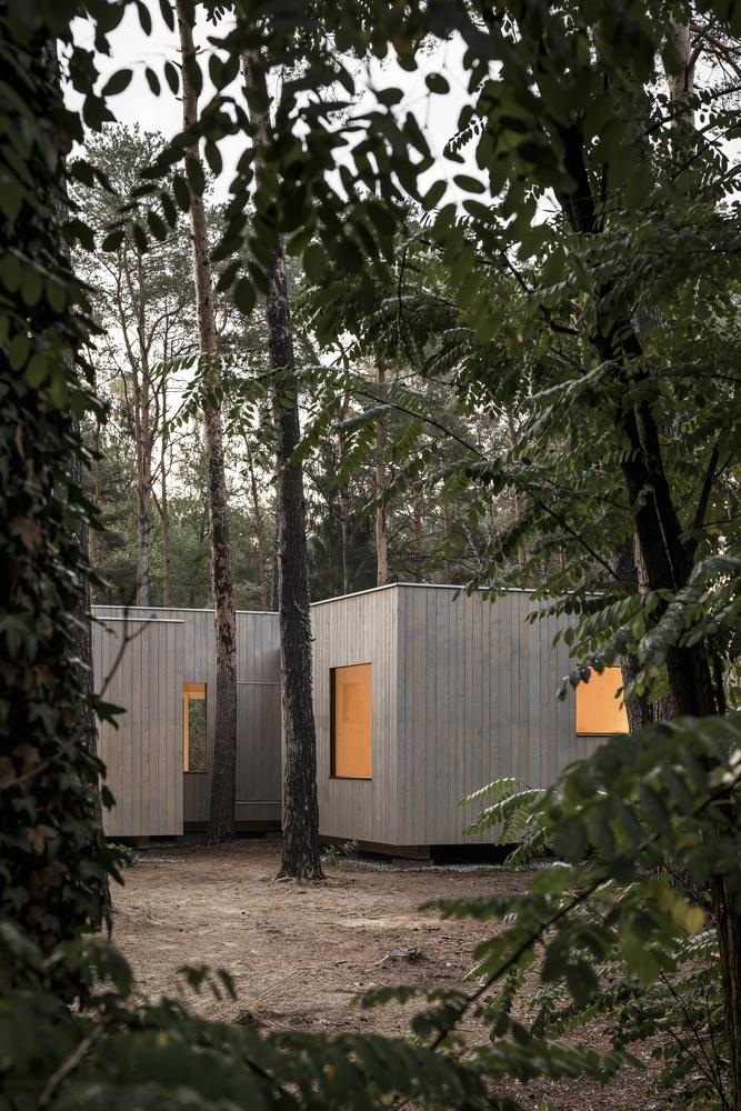 Koeris House - Những chiếc hộp bí ẩn giữa rừng thông   Zeller & Moye