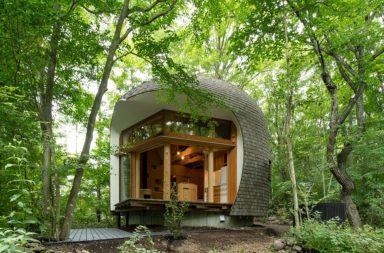 Shell House – Ngôn ngữ của núi rừng | Tono Mirai