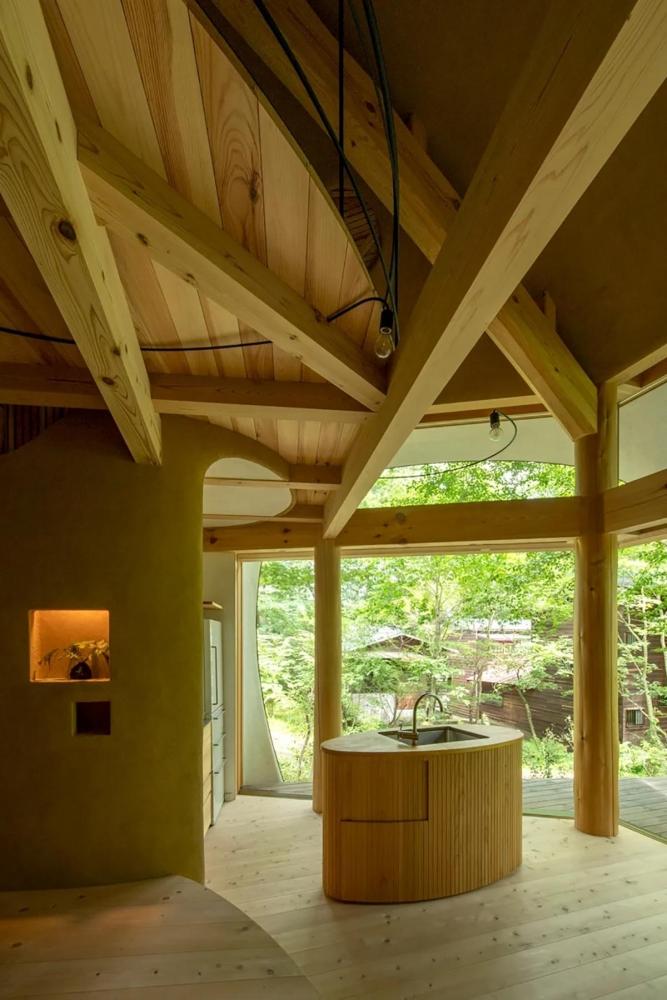Shell House Japan – Ngôn ngữ của núi rừng