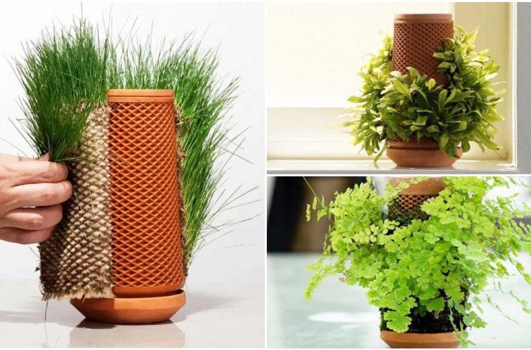 Terraplanter - trồng cây cảnh không cần đất