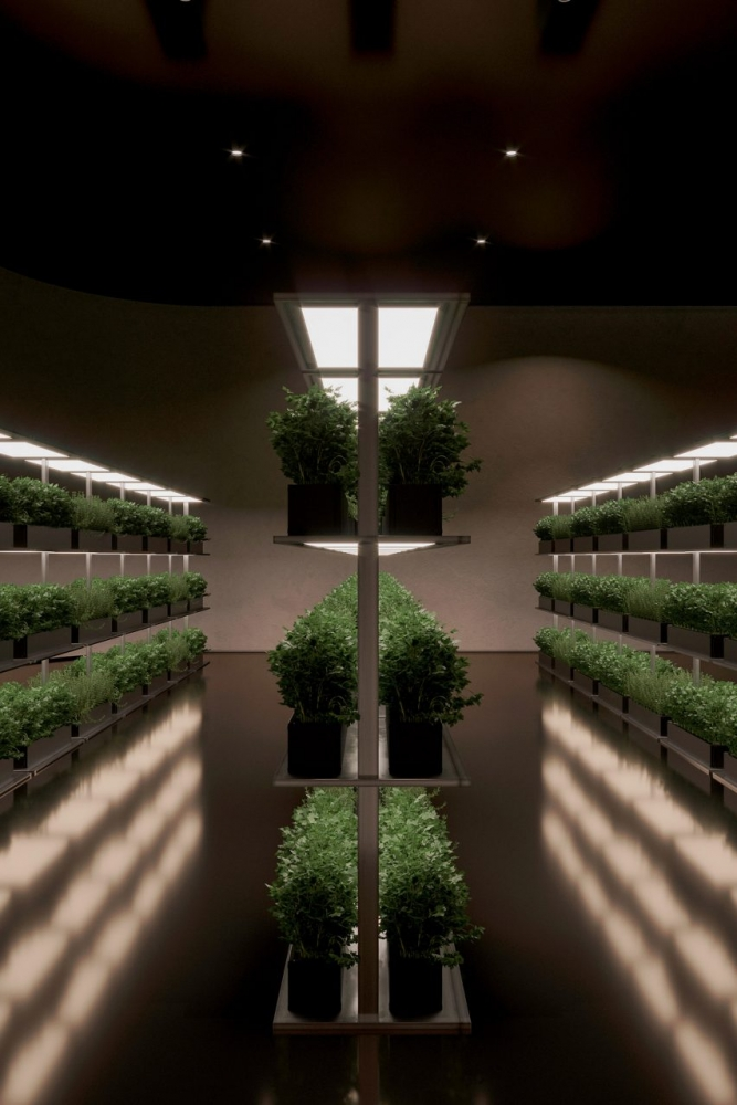 """""""Plan B"""": Nhà hầm đối phó với đại dịch   Sergey Makhno Architects"""