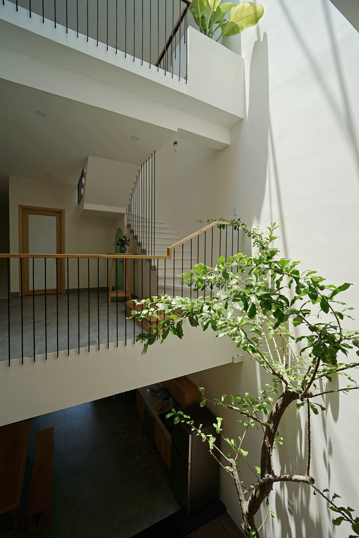 ANNE House - Giải pháp xanh cho nhà phố