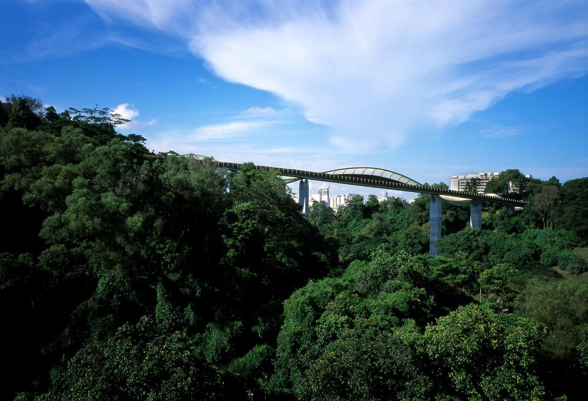 Cây cầu uốn lượn độc đáo ở Đảo quốc Sư tử - Henderson Waves (Singapore)