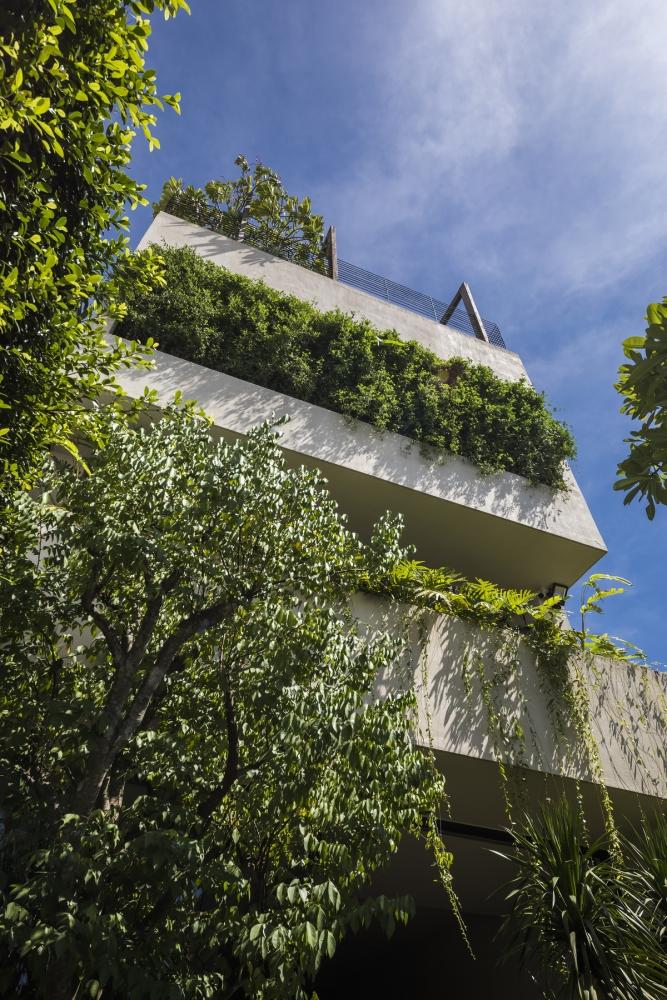 Tropical Suburb Town House – Nhà phố ngoại ô với kiến trúc từ bê tông nguyên khối | MM++ Architects