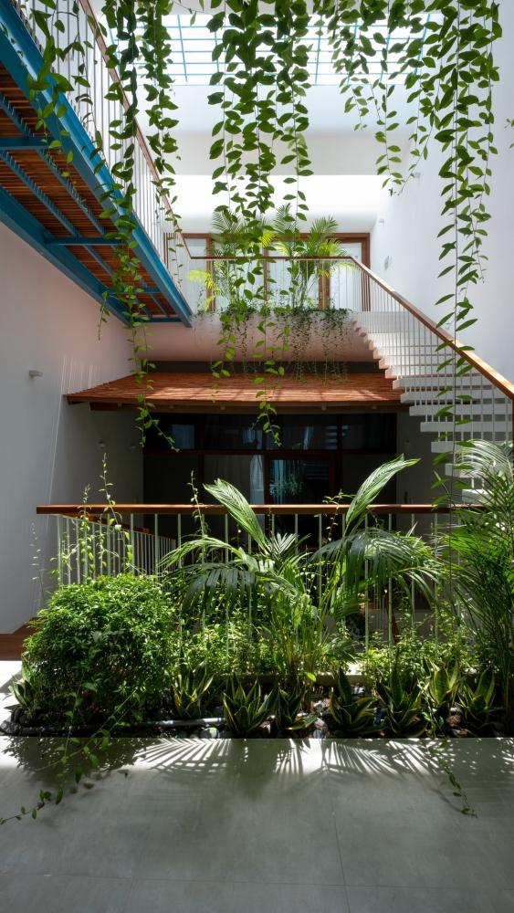 """Nhà Vườn Bậc Thang – Một tâm hồn """"say"""" thiên nhiên giữa phố thị   Chơn.a"""