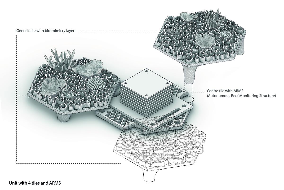 Sử dụng công nghệ in 3D để phục hồi rạn san hô chết tại Hồng Kông