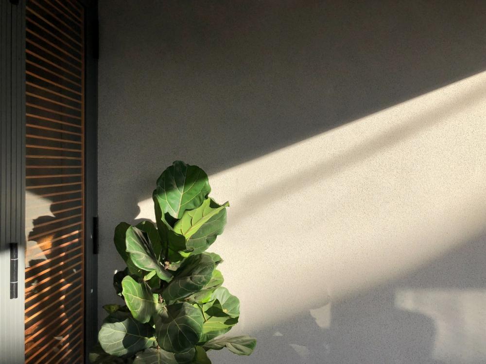 5 6 1 1000x1000 - Nhà Nam Hồ - công trình hòa quyện nét đẹp truyền thống và hiện đại   RYO Group