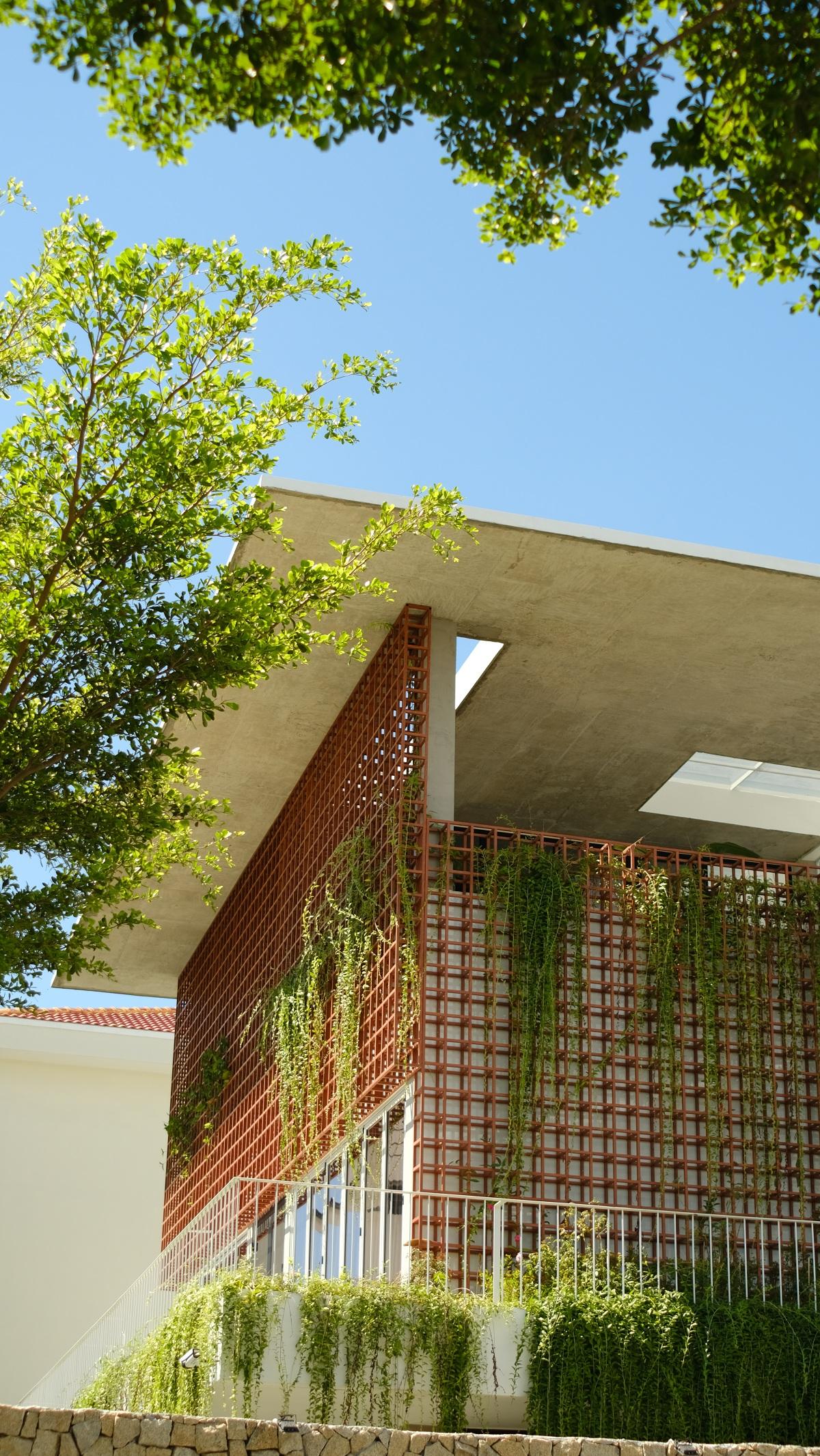 Freedom House - Thả mình giữa khoảng trời của bóng nắng và cây xanh